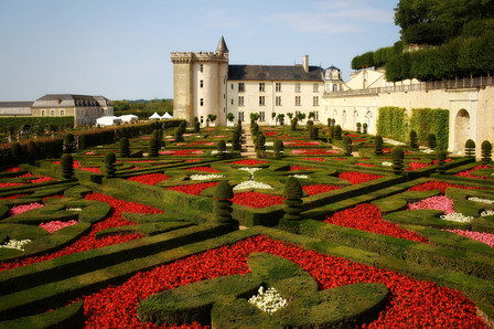 Castle of Cheverny's garden